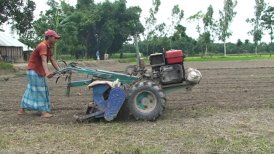 Siembra directa de arroz en secano   Access Agriculture